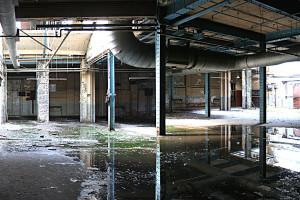 Barbauld St Ground Floor